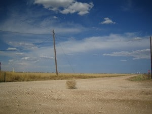Tumbleweed image by jezarnold via CC by 2.0.
