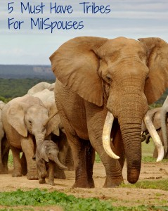 5 Tribes Every MilSpouse Needs