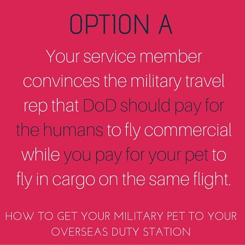 How to get your military pet to your new overseas duty station