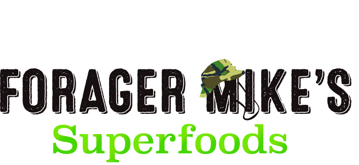 Military Spouse Entrepreneur Spotlight: Forager Mike's Superfoods